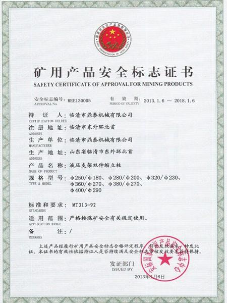 鼎泰安全证书